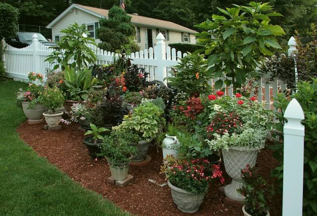 container-garden-large